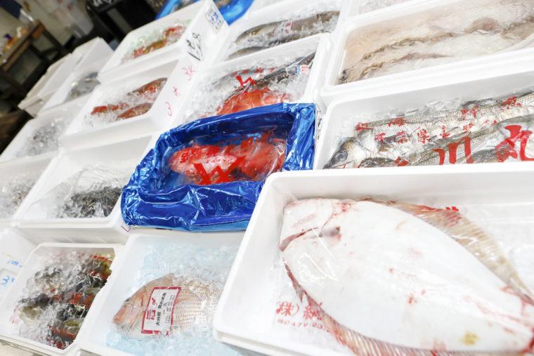 良品質の鮮魚を取り揃えています