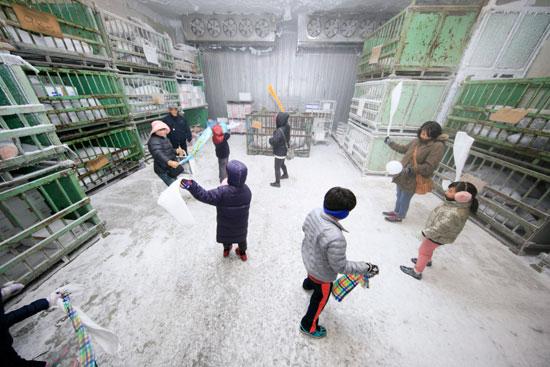 氷点下40度の冷凍庫体験!
