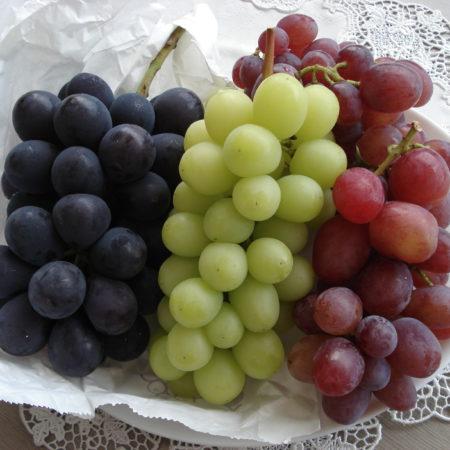 葡萄! ぶどう! ブドウ!