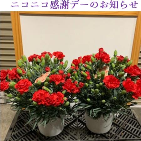5月8日土曜日 ニコニコ感謝デーのお知らせ