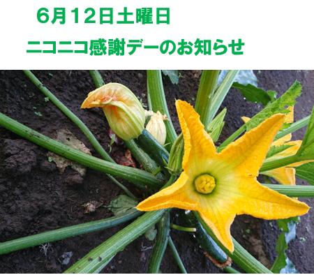 6月12日土曜日 ニコニコ感謝デーのお知らせ